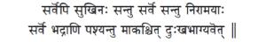 vision_sanskrit